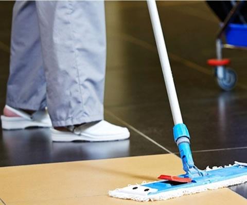 Serviços de Limpeza e Higienização para Empresas e Comércios